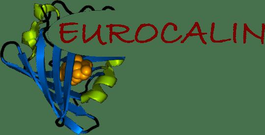 Eurocalin logo